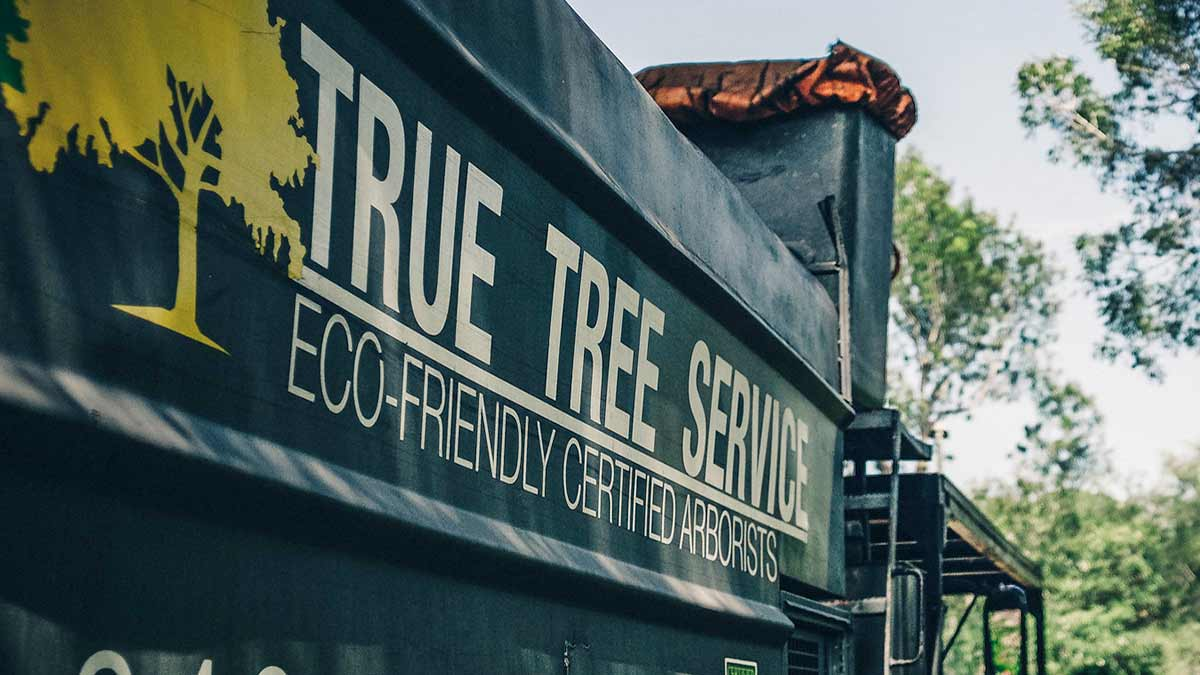 True Tree Service Truck